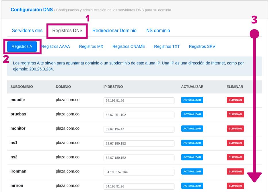 Creación de registro A para el dominio.