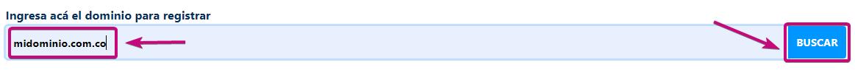 Ingresa el dominio que deseas registrar