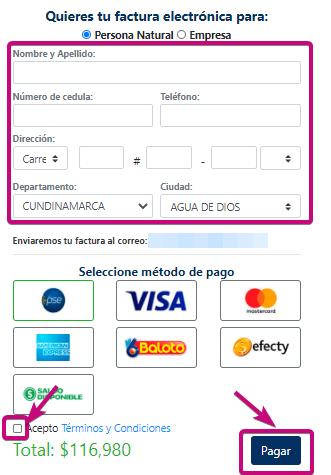 Pagar dominio. correo corporativo y hosting