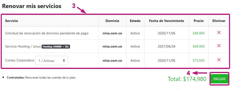Pagar renovación dominio, correo corporativo y hosting